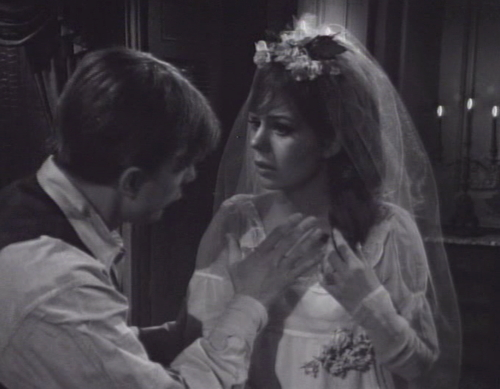 239 dark shadows shush maggie