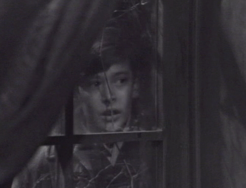 240 dark shadows david window