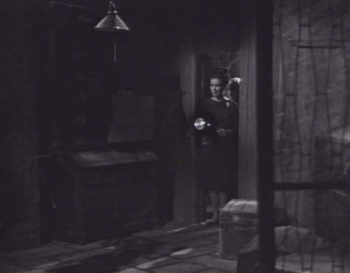 249 dark shadows liz basement