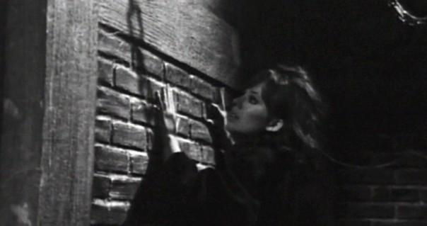 260 dark shadows header maggie count the bricks
