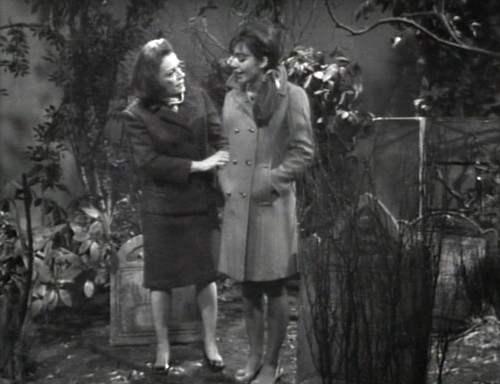 283 dark shadows field trip