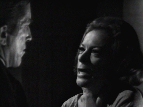 291 dark shadows julia theory