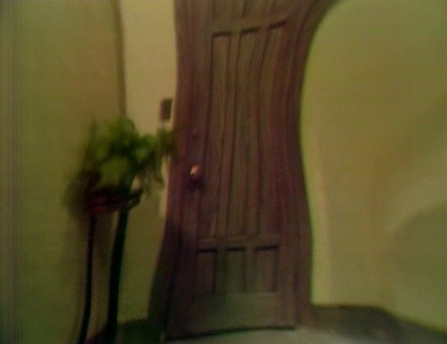 361 dark shadows door trippy