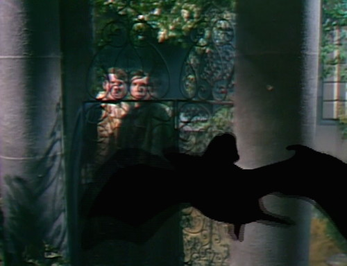 403 dark shadows bat by bil baird