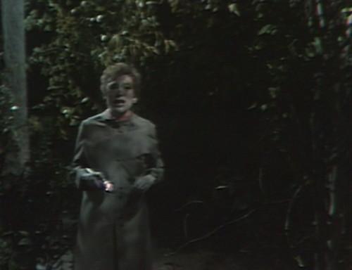 501 dark shadows julia woods