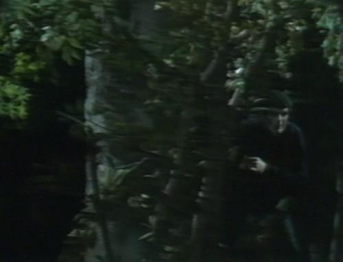 505 dark shadows adam accomplice