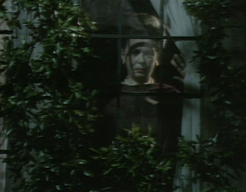 513 dark shadows liz window