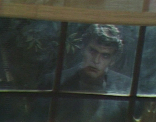 514 dark shadows adam window