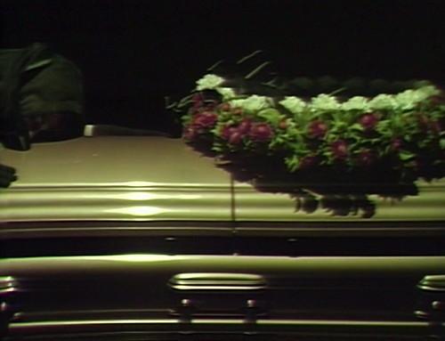 518 dark shadows maggie coffin