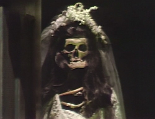 531 dark shadows skeleton bride