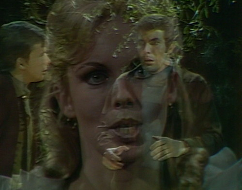 562 dark shadows angelique hurry