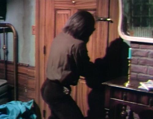 652 dark shadows werewolf door