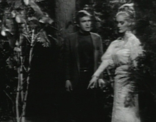 684 dark shadows chris beth woods