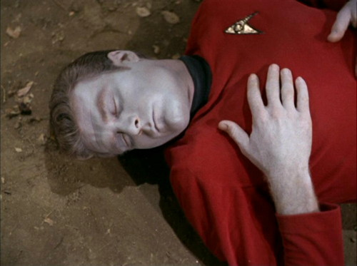 751 star trek redshirt