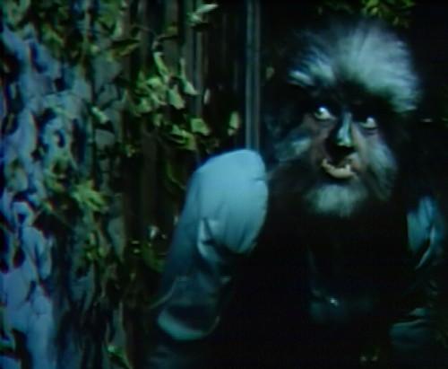 753 dark shadows werewolf quentin