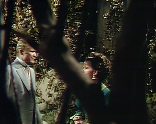 788 dark shadows edward judith tree