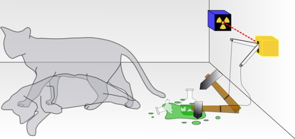 870 Schrodingers_cat