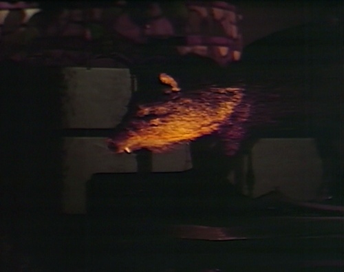 897 dark shadows pig weasel