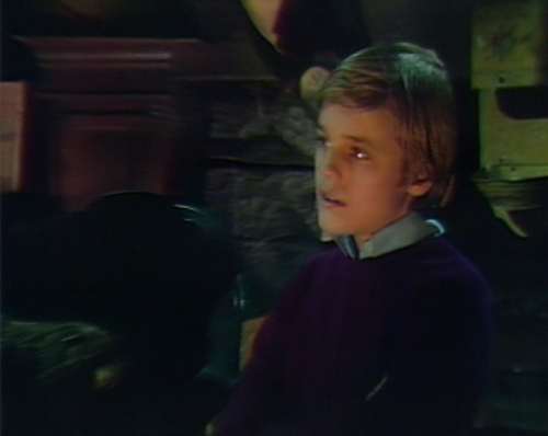 913 dark shadows michael arms