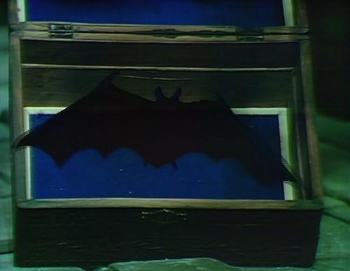 950-dark-shadows-box-bat