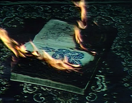 959-dark-shadows-book-burning